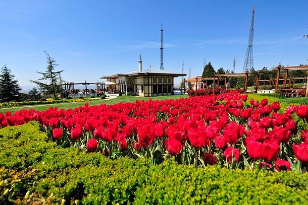 İstanbul'da lale şöleni! İşte gidebileceğiniz 10 yer 10