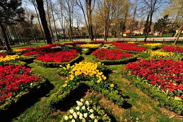İstanbul'da lale şöleni! İşte gidebileceğiniz 10 yer 12