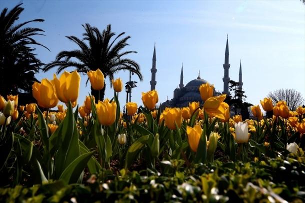 İstanbul'da lale şöleni! İşte gidebileceğiniz 10 yer 7
