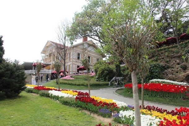İstanbul'da lale şöleni! İşte gidebileceğiniz 10 yer 9
