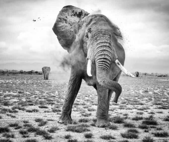 2017 National Geographic Seyahat Fotoğrafları Yarışması'nın en iyileri 17