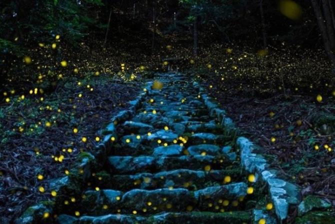 2017 National Geographic Seyahat Fotoğrafları Yarışması'nın en iyileri 6