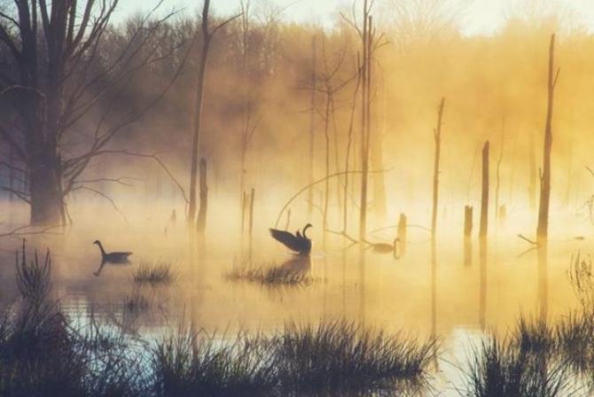 2017 National Geographic Seyahat Fotoğrafları Yarışması'nın en iyileri 7