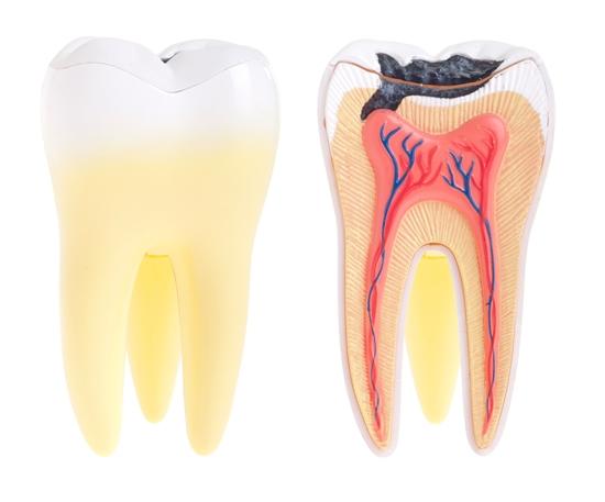 Dişler  İçin Zararlı 10 Şey 4