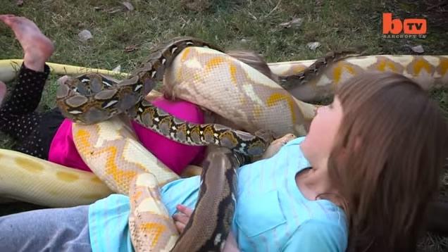 Oyuncakları gerçek yılanlar ve timsahlar! 2