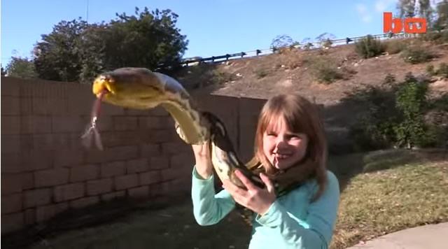 Oyuncakları gerçek yılanlar ve timsahlar! 7