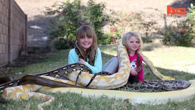 Oyuncakları gerçek yılanlar ve timsahlar! 8