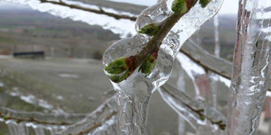 Meteorolojiden 5 il için don uyarısı