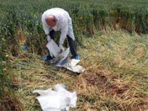 Mezarlıkta yasak aşk cinayeti:2 ölü