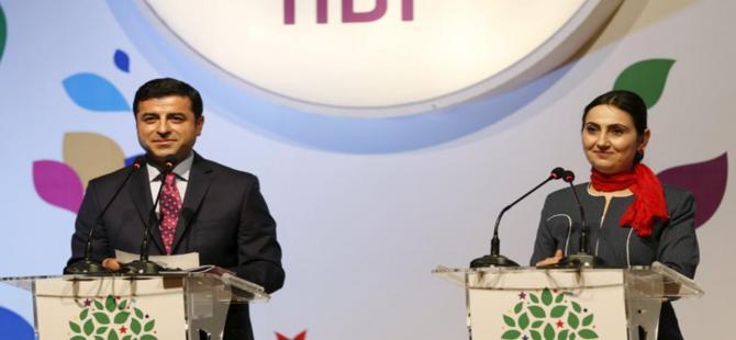 HDP'den 15 maddelik açıklama