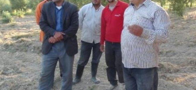 Görgü tanıkları Suriye hava aracının vurulduğu anı anlattı