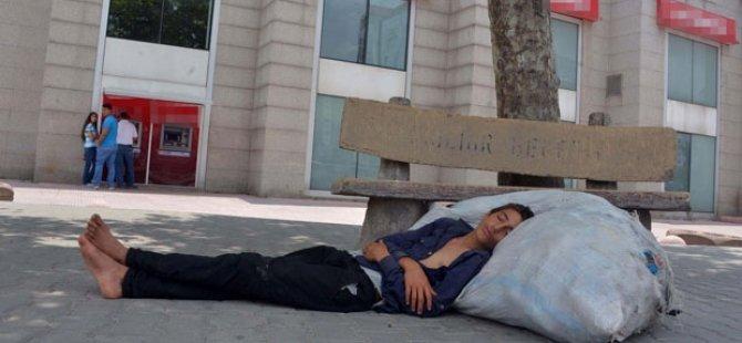 Kağıt toplayan gencin uykusu!