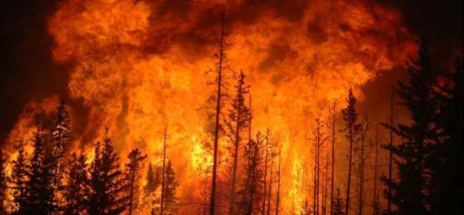 Kanada'da orman yangınları 3 eyalete yayıldı