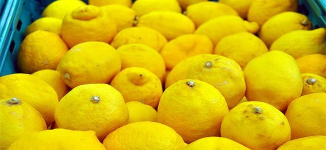 Temmuz'un zam şampiyonu limon