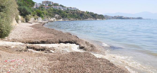 Kuşadası'nda iki plaj vatandaşlara kapatıldı