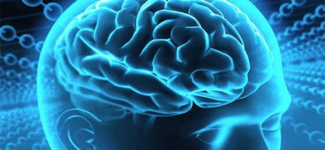 Beyin Girişimi Projesi nedir?