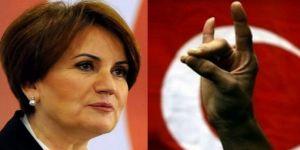 Meral Akşener'in yeni partisinde bozkurt yasağı