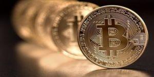 Şimşek: Bitcoin, lale çılgınlığını geçti, uzak durun