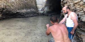 Balık tutmaya gittiler, gördükleri manzara karşısında dehşete düştüler