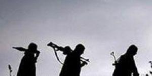 Son dakika haberleri... TSK açıkladı: Zap'ta 5 günde 44 terörist öldürüldü