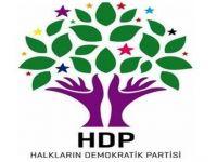 HDP'den Murat Boz'lu kampanya açıklaması