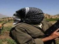ABD'den 'PKK'nın terör listesinden çıkarılsın' sözleri