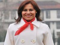 CHP'li Vekil: Kürt halkından özür dilerim