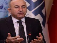 Dışişleri Bakanı: Tehdit kalmadığından emin olursak ikinci 3 ay bitmeden OHAL'i bitiririz