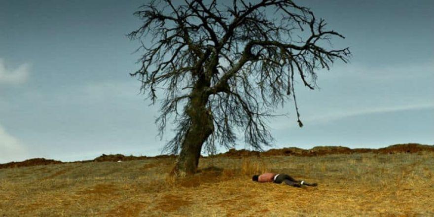 Nuri Bilge Ceylan'ın yeni filmi 'Ahlat Ağacı'ndan ilk fragman